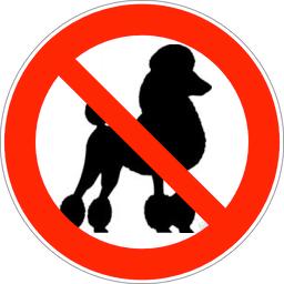 no poodles